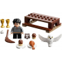 LEGO 30420 Harry Potter und Hedwig: Eulenlieferung Polybag